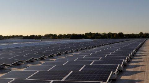 2.000 panelen op het dak van een groene retailer
