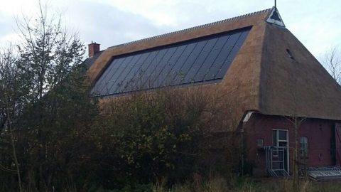 Referentieproject Libra Energy rieten dak