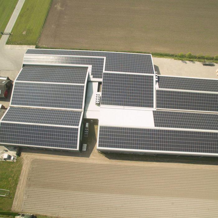 PakDeZon installeert 3202 panelen Boviet 300Wp percium bij Witlofkwekerij Spruit in Nibbixwoud