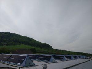 Suncrest in Zwitserland installeert 192 zonnepanelen op een hondenvoerfabriek 1
