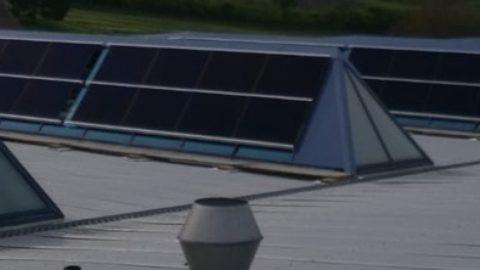 Suncrest in Zwitserland installeert 192 zonnepanelen op een hondenvoerfabriek